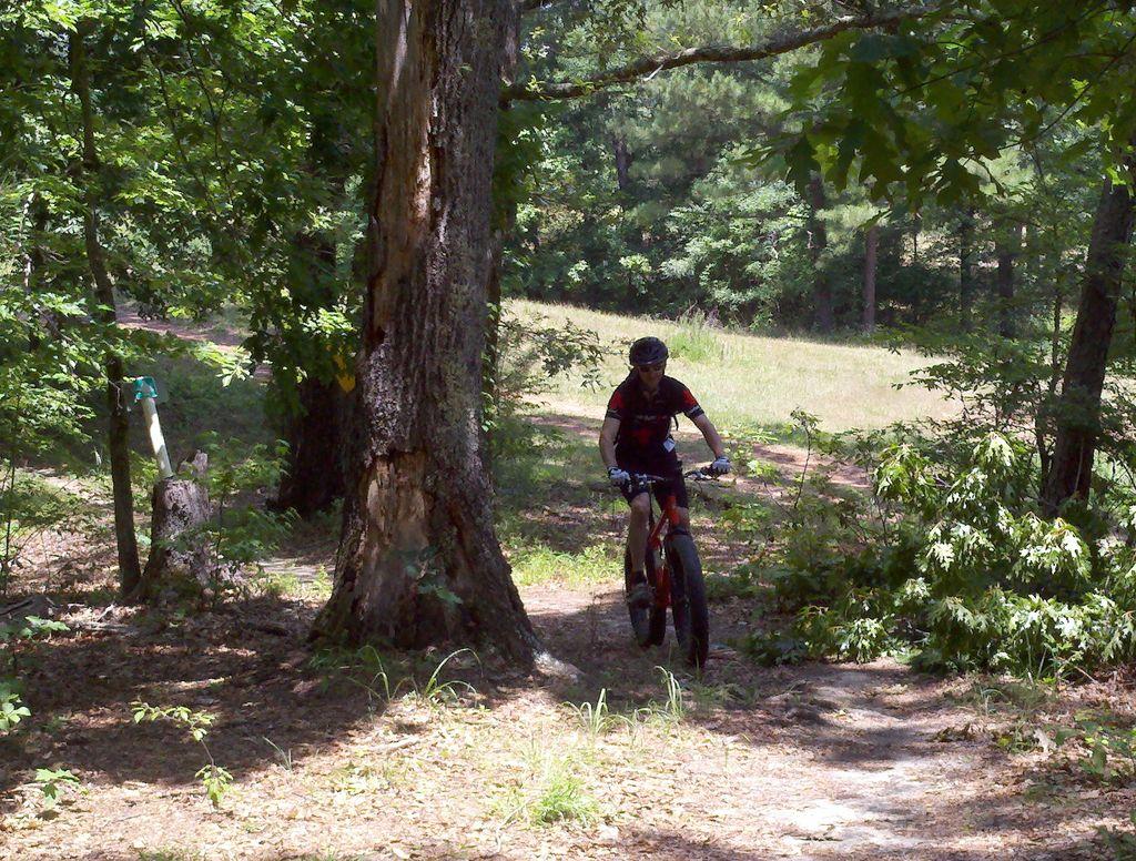 Daily fatbike pic thread-olympic_trail.jpg