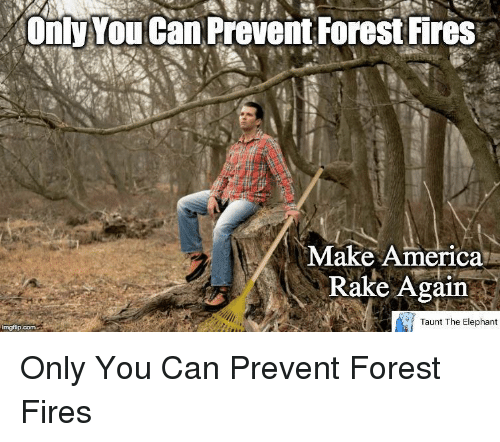Name:  only-youcan-prevent-forest-fires-make-america-rake-again-taunt-37814440.png Views: 113 Size:  137.3 KB