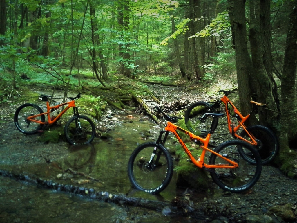 Post your RM shots-orange-bikes.jpg