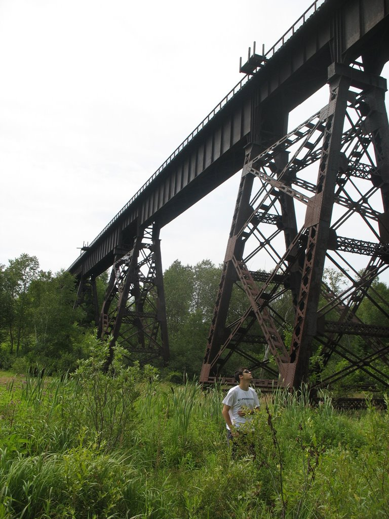 Bridges of Eastern Canada-orange-corners-trestle2.jpg