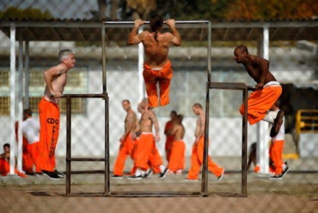 Wrongful Arrest Warrant, HELP!-orange.jpg