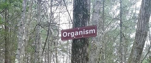 Name:  organism.jpg
