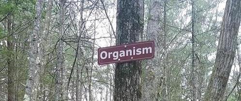 Name:  organism.jpg Views: 1041 Size:  44.4 KB