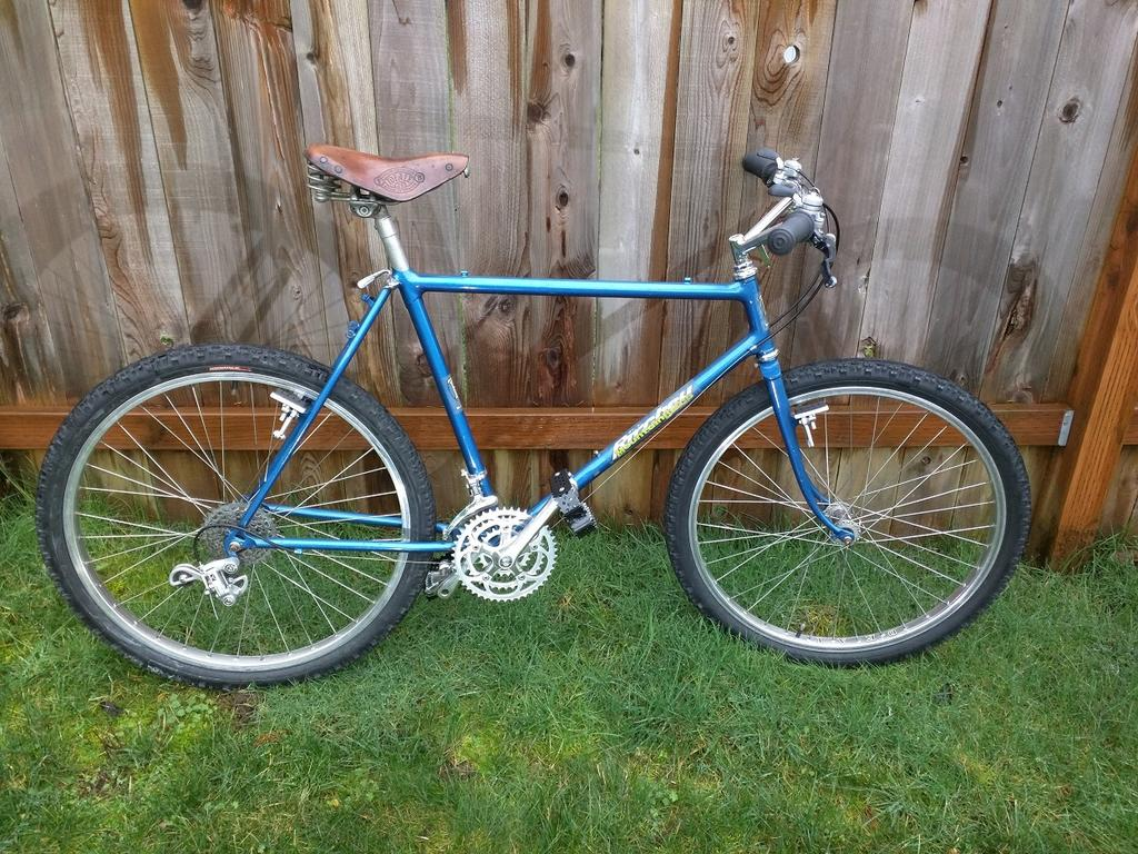 What Model early 80's Ritchey is this?-outside-b1.jpg