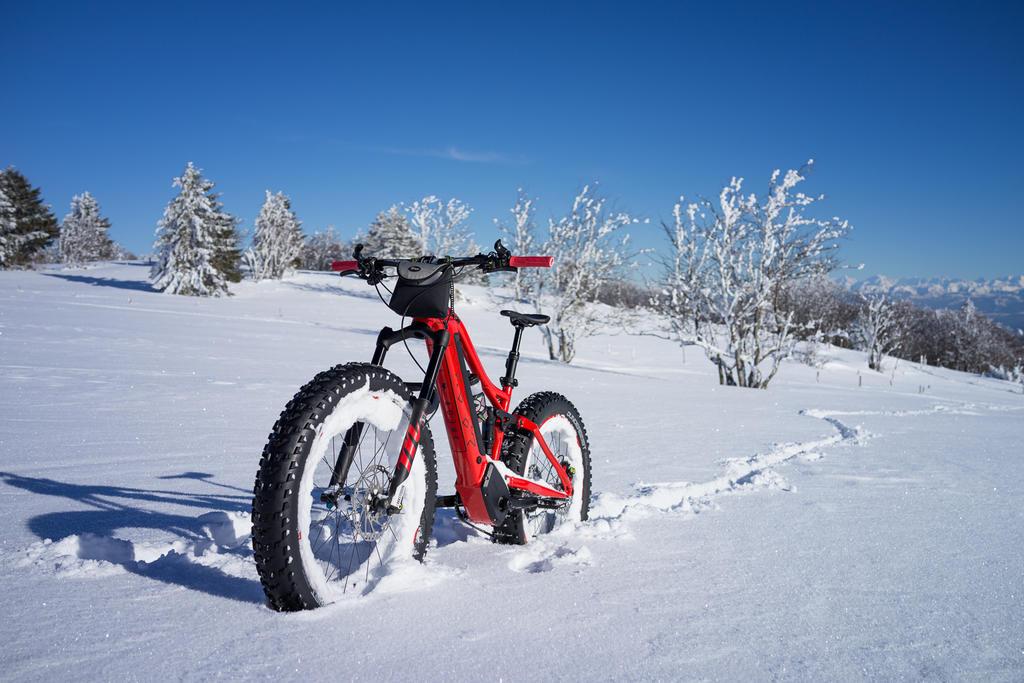 Camera for Fat Biking?-p-f.ch_180213_1509_08931_rx1.jpg
