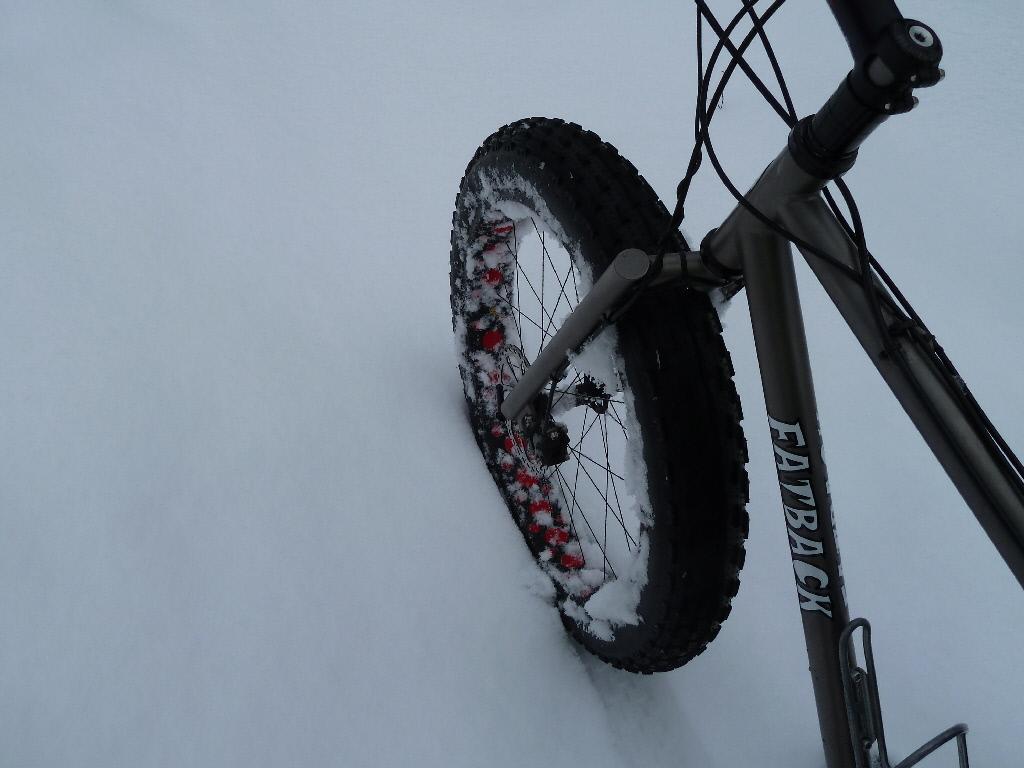 Daily fatbike pic thread-p1000747-1-.jpg