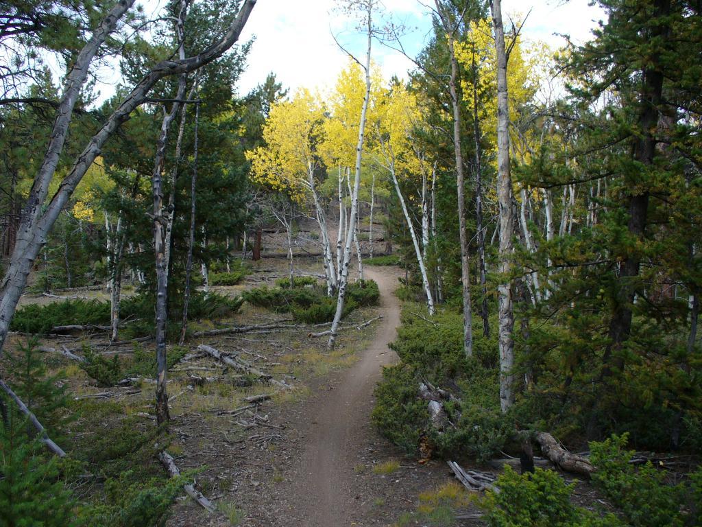 Colorado Tandem Riding-p1000845.jpg