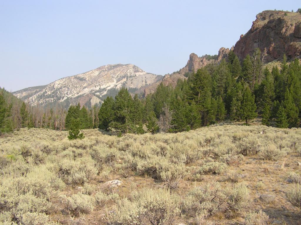 Lemhi Range, Leadore Area Ride-p1010001.jpg