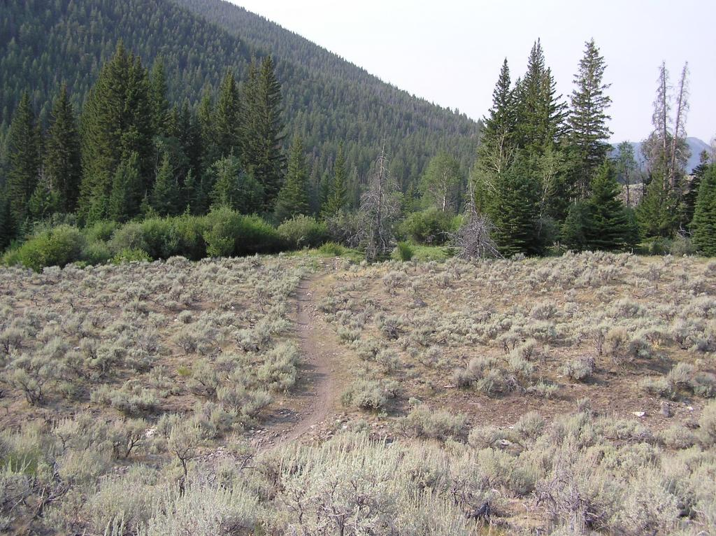 Lemhi Range, Leadore Area Ride-p1010002.jpg
