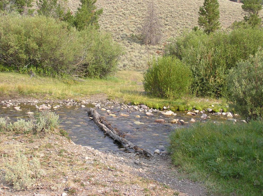 Lemhi Range, Leadore Area Ride-p1010004.jpg
