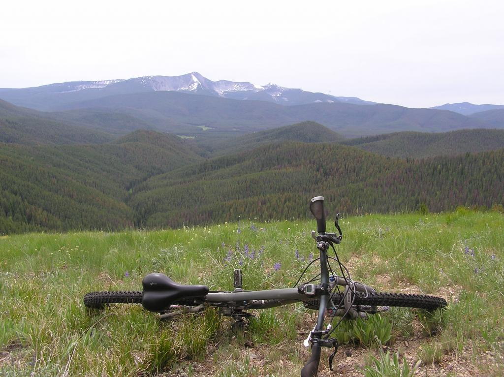 Ruby Creek/Butler Creek Loop aka Mosquito Mania-p1010005.jpg