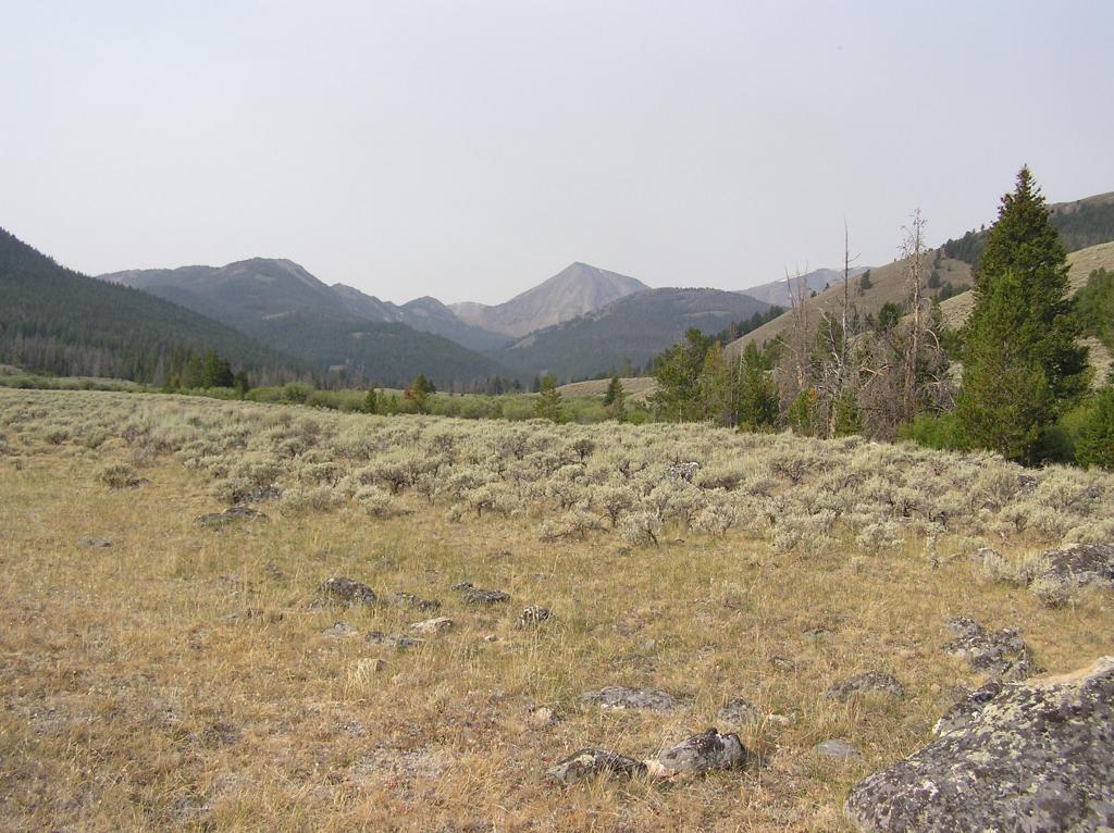 Lemhi Range, Leadore Area Ride-p1010006.jpg