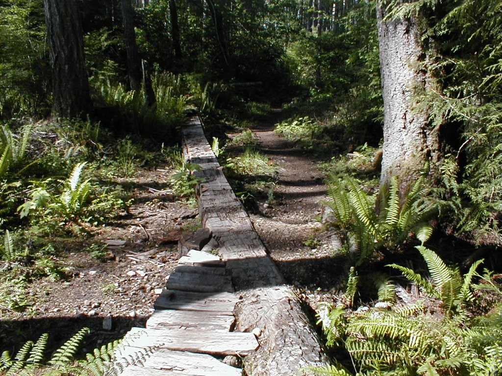 Little kid friendly trail-p1010007-3-.jpg