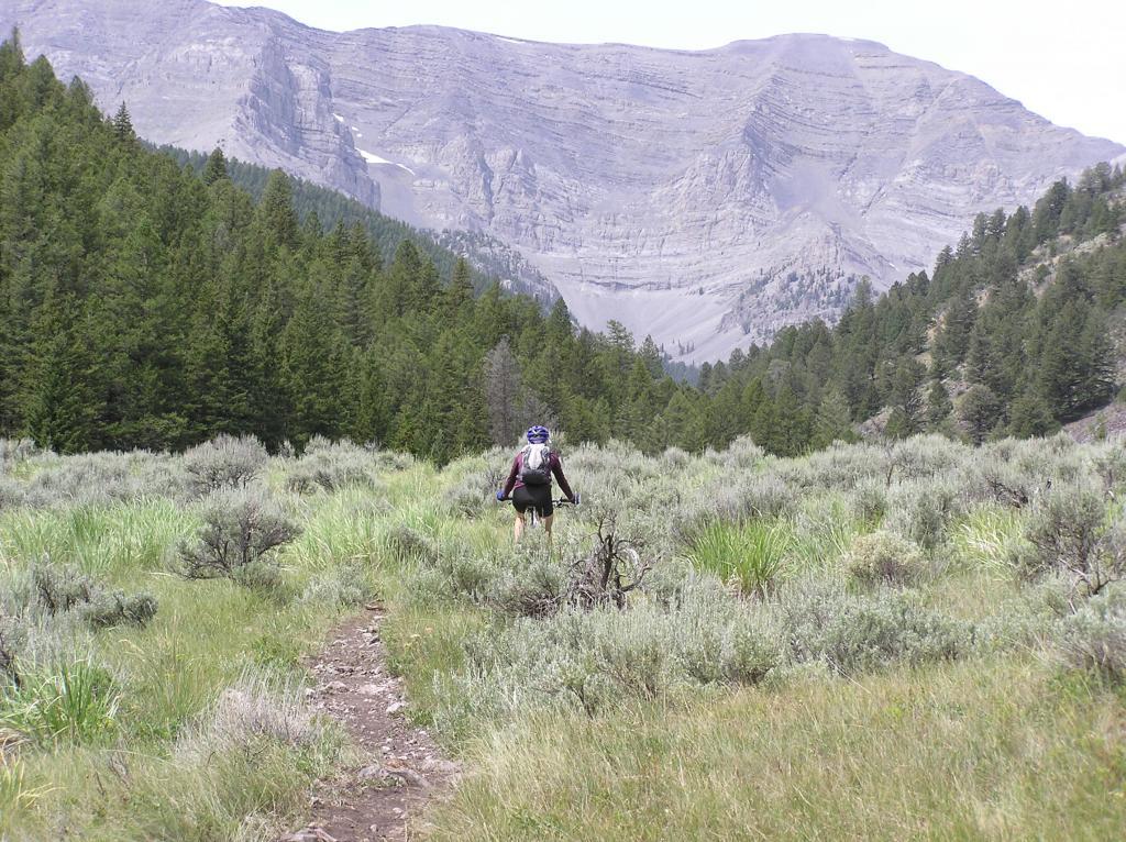 Webber Cr Trail, Idaho side Italian Peaks.-p1010007.jpg
