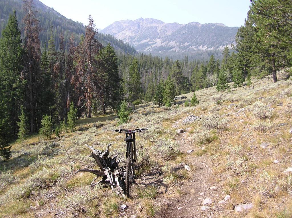 Circumnavigating Mill Mountain-p1010007.jpg