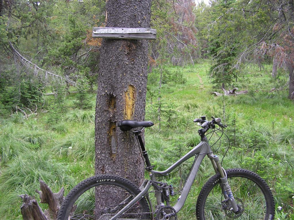 Ruby Creek/Butler Creek Loop aka Mosquito Mania-p1010009.jpg