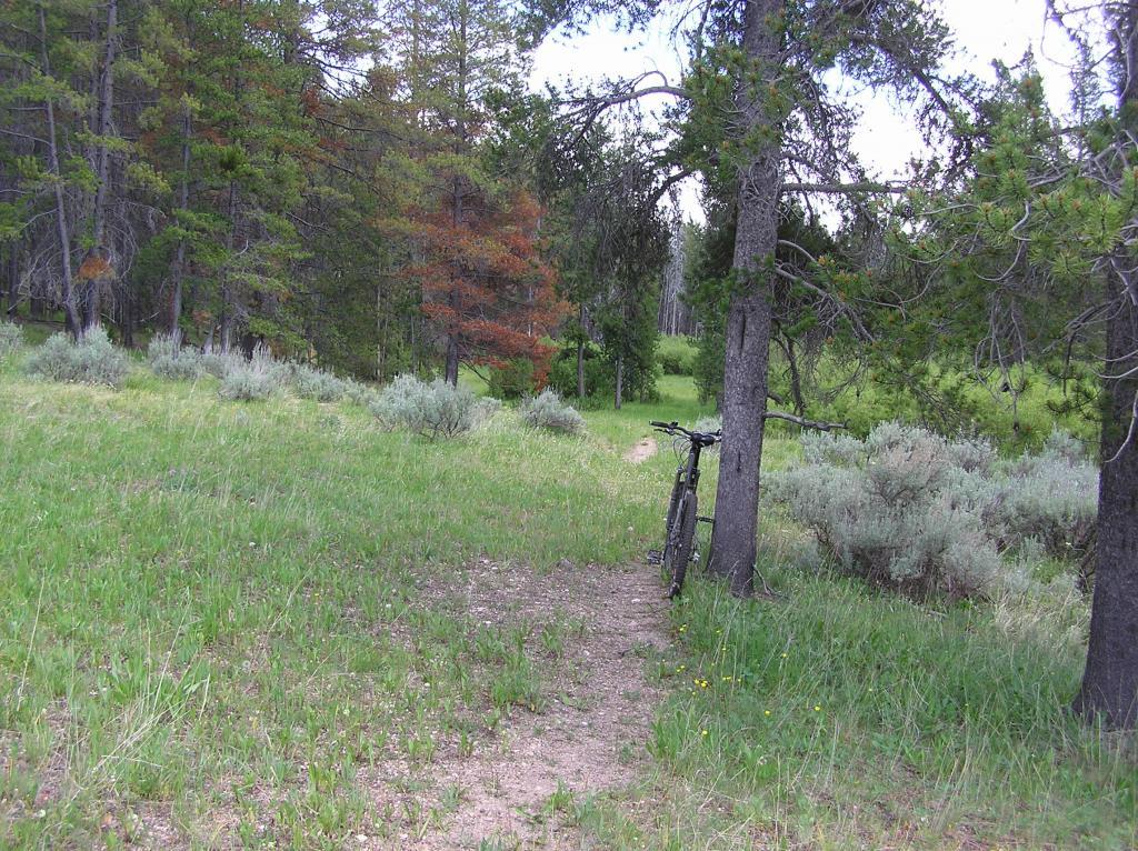 Ruby Creek/Butler Creek Loop aka Mosquito Mania-p1010013.jpg