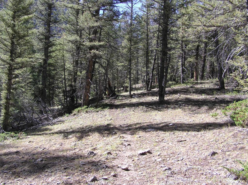 Grouse Creek Trail, Pahsimeroi Range, Idaho-p1010014.jpg