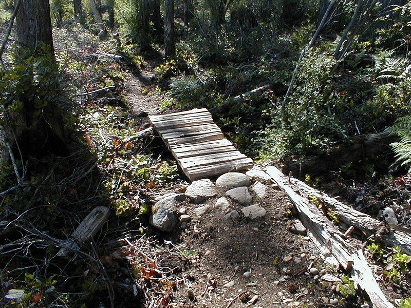 Niagara Region - Looking for trail tools.-p1010017.jpg
