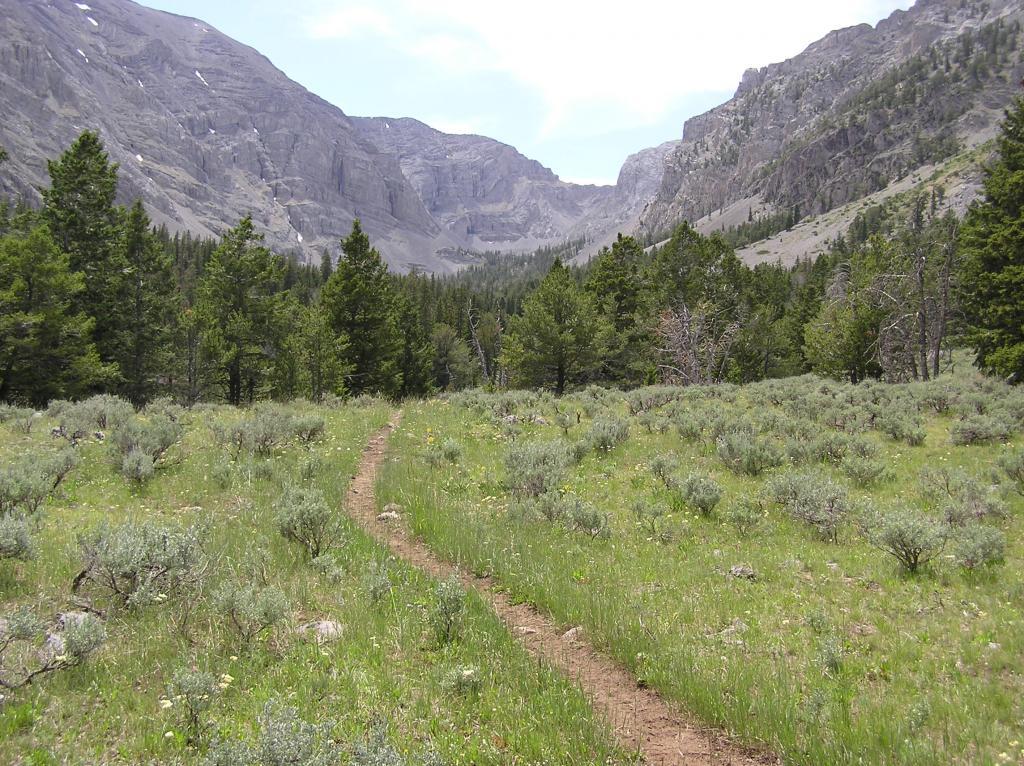 Webber Cr Trail, Idaho side Italian Peaks.-p1010025.jpg