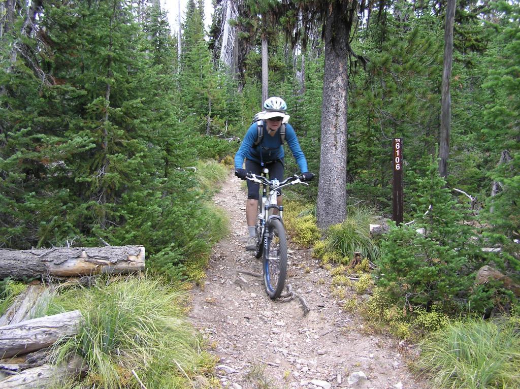 Stateline Divide -Twin Creeks Ridge Trail off Lost Trail Pass-p1010028.jpg