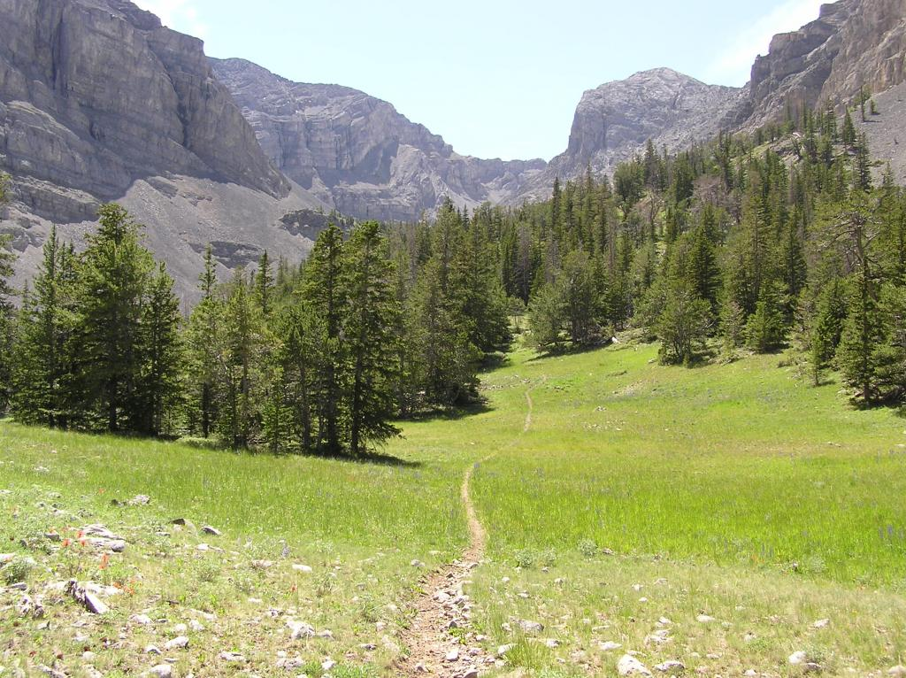 Webber Cr Trail, Idaho side Italian Peaks.-p1010031.jpg