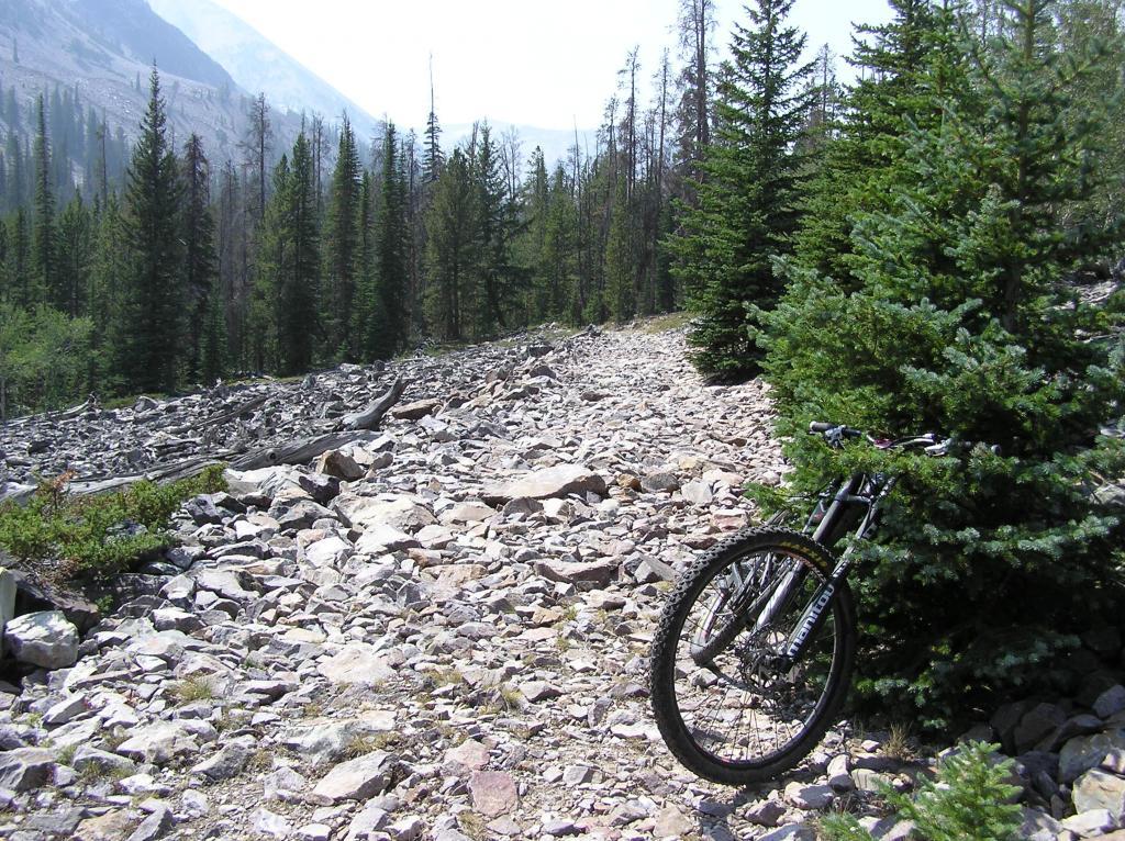 Circumnavigating Mill Mountain-p1010058.jpg