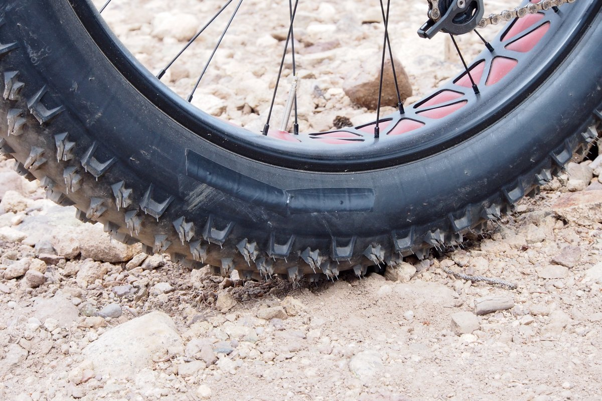 Specialized Fatboy Demo Tire