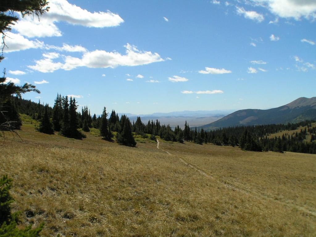 Trail Pics-p1010411.jpg