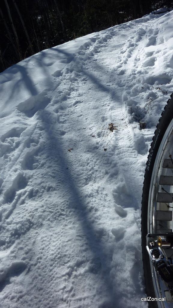 2013 Beerd Belly Ride -With more Belly this year!! Jan. 1 Elk Meadow Upper lot-p1010680.jpg