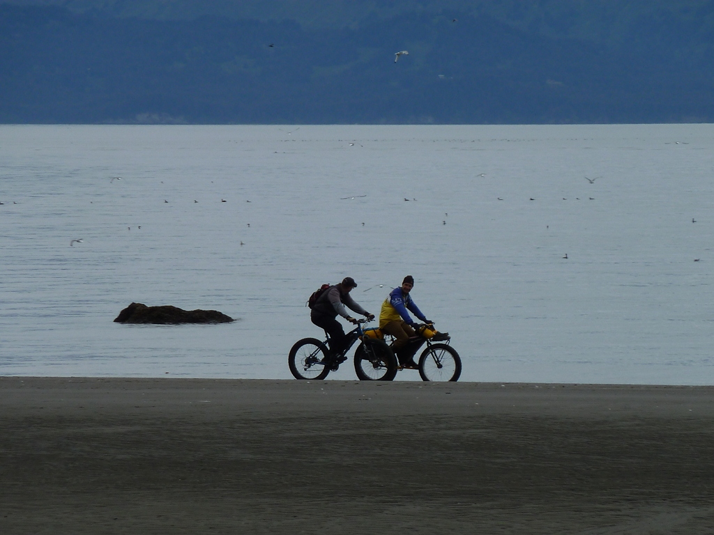 Beach/Sand riding picture thread.-p1010751.jpg