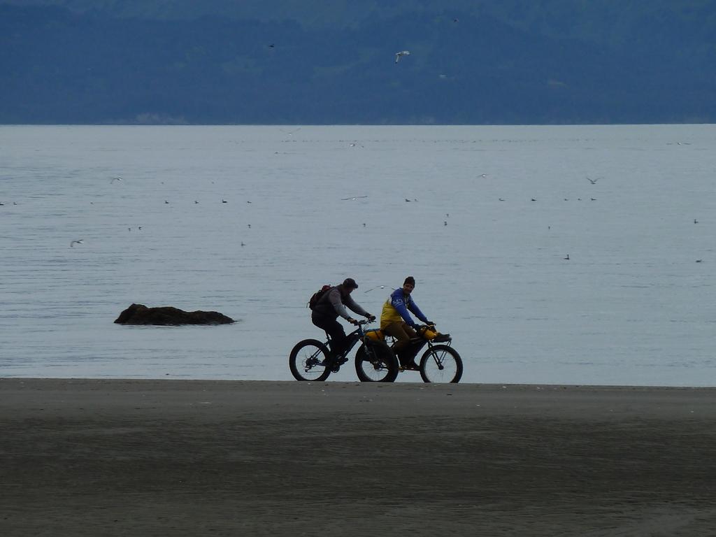 Beach/Sand riding picture thread.-p1010751.jpg