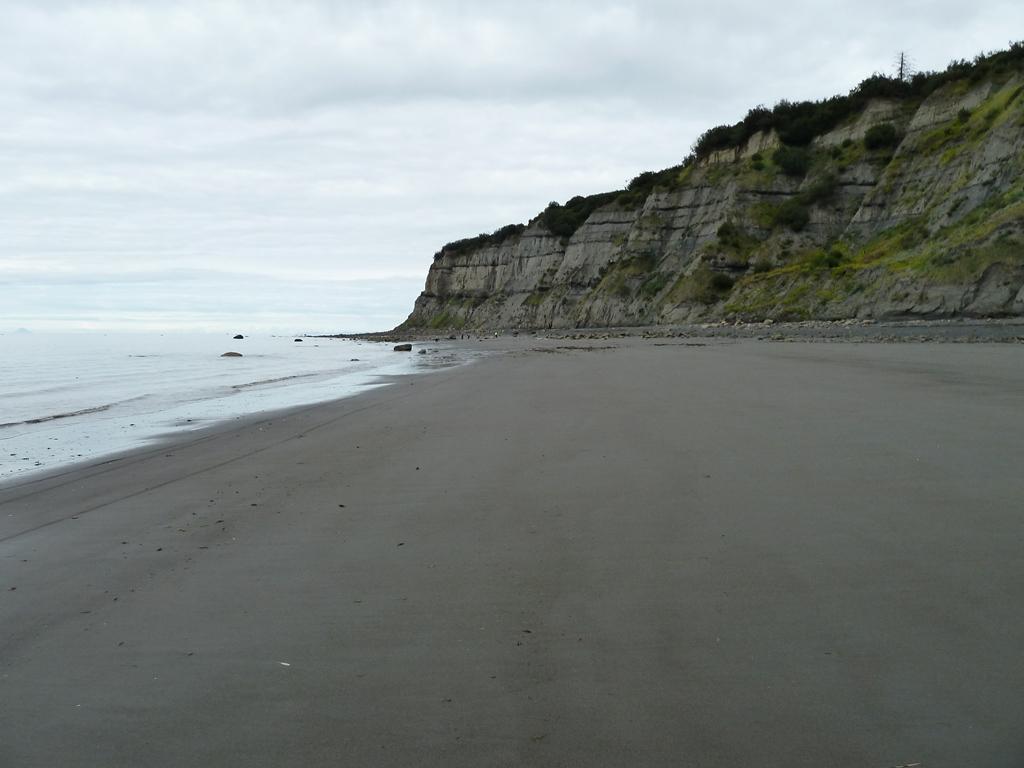 Beach/Sand riding picture thread.-p1010761.jpg