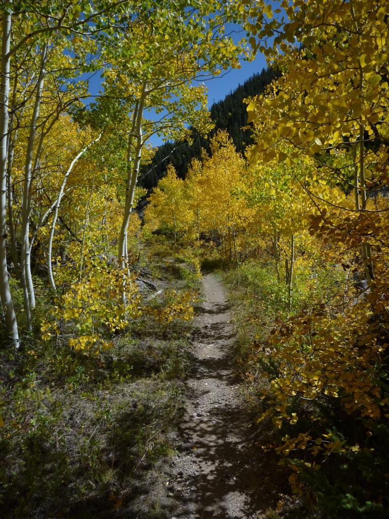 Colorado Tandem Riding-p1010787.jpg
