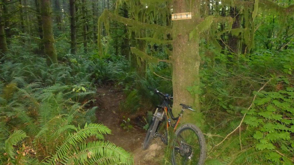 Bike + trail marker pics-p1010807-small.jpg