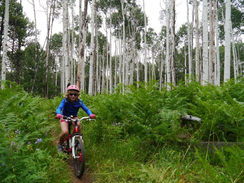 Want to take my 8yo daughter Mountain Biking...-p1010911_sm.jpg