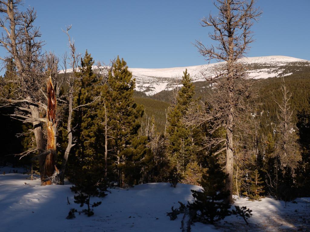 Who's biking this winter and not skiing?-p1010946.jpg