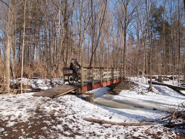 Local Trail Rides-p1015968.jpg