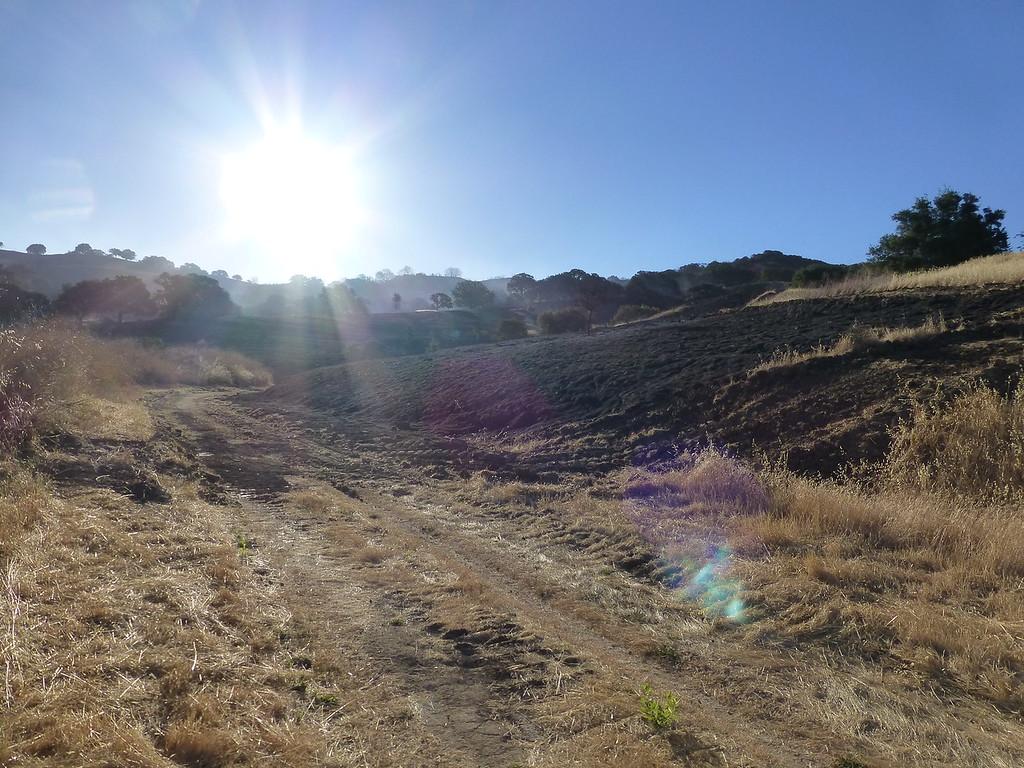 Bummer of a PSA. Lime Ridge is burning.-p1020795-xl.jpg