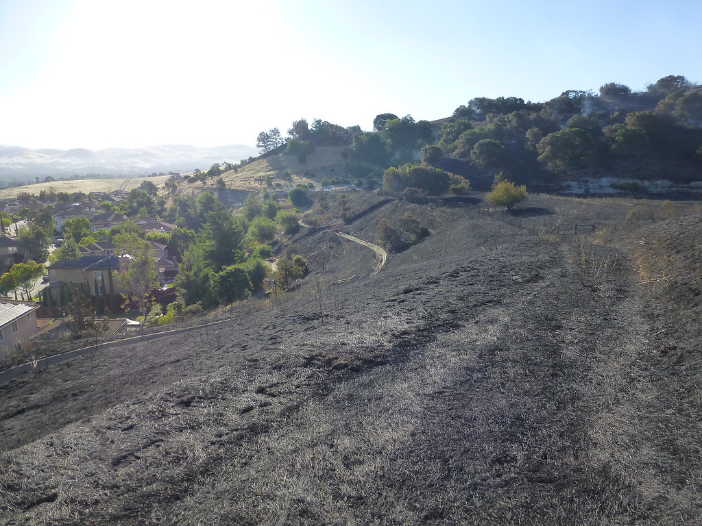 Bummer of a PSA. Lime Ridge is burning.-p1020809-xl.jpg