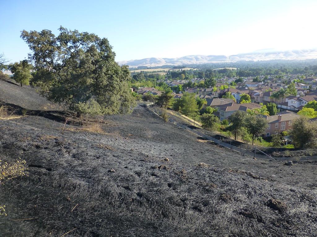 Bummer of a PSA. Lime Ridge is burning.-p1020810-xl.jpg