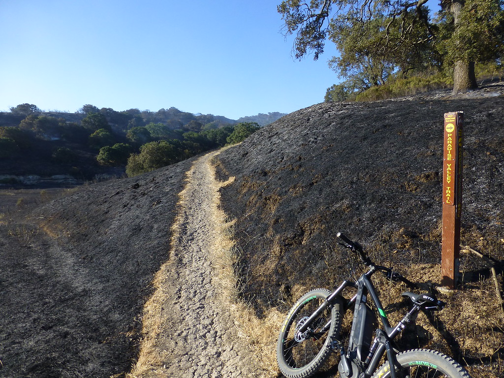 Bummer of a PSA. Lime Ridge is burning.-p1020811-xl.jpg