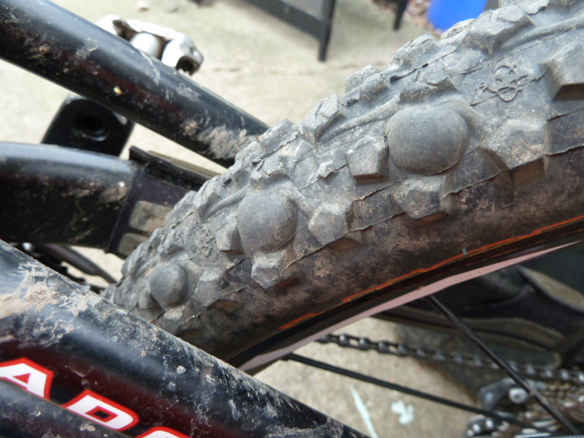 Maxxis Ignitor + Stan's sealant + time = blisters-p1030959.jpg