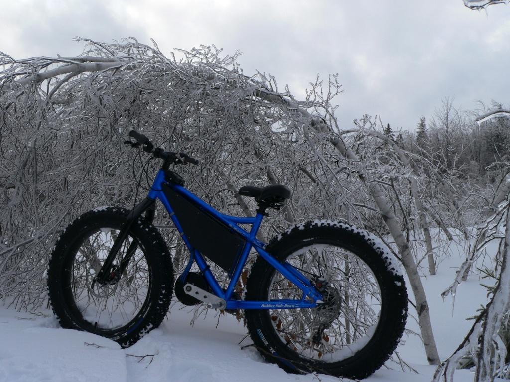 "RSD Bikes ""The Mayor""-p1060479.jpg"