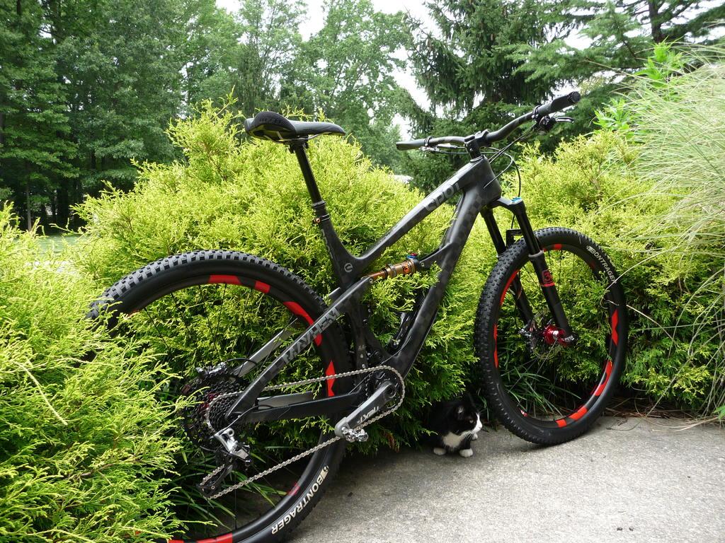 """The """"Holy Grail"""" of FS 29er Trail bike?-p1070796.jpg"""