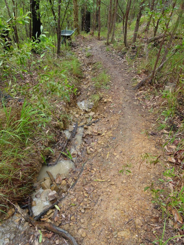 Does trail erosion really harm the environment?-p1100921.jpg