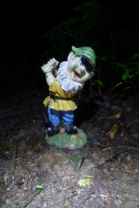 Adventures with the Pisgah Gnome-p1100932.jpg
