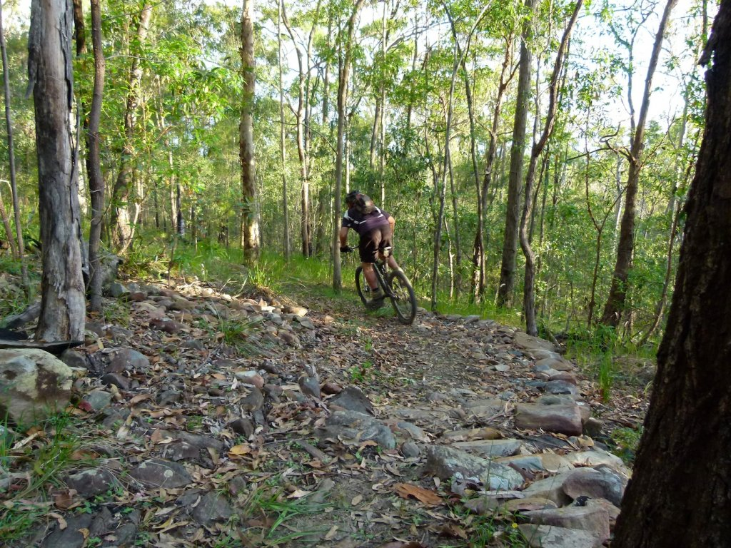 Medical information - New diagnosis for trail builders-p1110116-1-1.jpg