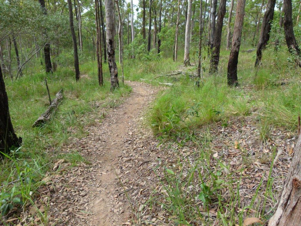 Trail Closure Techniques-p1110118.jpg