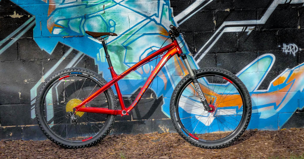 The All Mountain Hardtail Thread. Post up yours.-p1110225.jpg